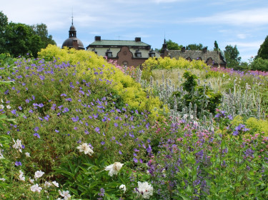Den vackra slänten i Engsholms slottpark.
