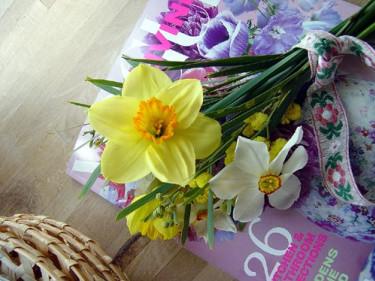 Påsklilja. Foto: Blomsterfrämjandet.