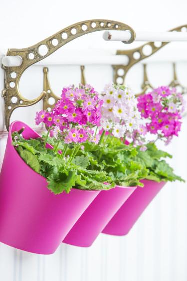 Att hänga blommorna på rad är både vackert och roligt! Foto: Floradania