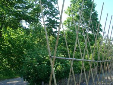 I klykorna läggs en bambupinne som håller ihop raden.  Foto: Katarina Kihlberg