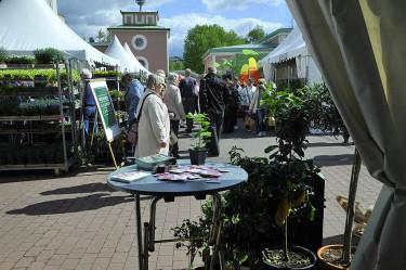 Folkvimmel på lördagen Foto: Bernt Svensson