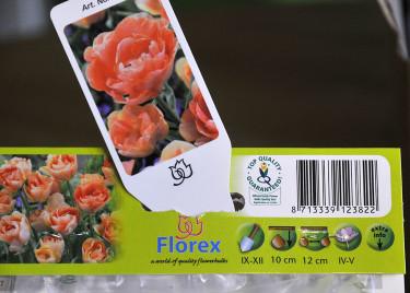 Ofta finns planteringsinstruktioner på lökpåsen och etiketten finns med också