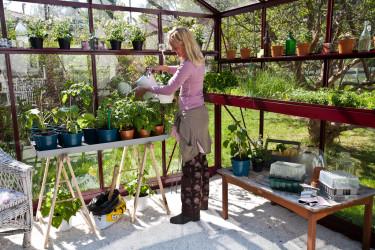Hyllor och upphöjda bäddar gör det lättare att skapar en i god arbetsställning. Foto: Willab Garden