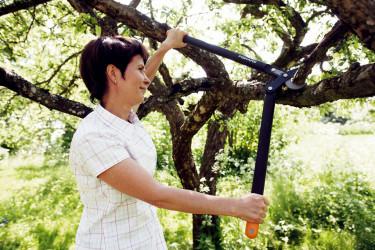 En bra grensax hjälper dig med grovjobbet.Foto: Fiskars.