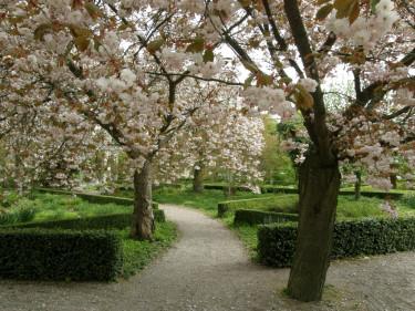 """Vi tre & trädgårds egen favorit: entrén till """"Gunnars Trädgård"""" i Alnarpsparken. Vi kan hämta mycket inspiration och idéer till den egna trädgården även i offentlig miljö."""