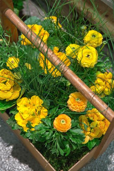 Bukettranunkel + toffelblomma Foto: Floradania