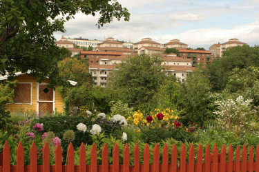 Härlig vy från kolonin Tanto Norra på Södemalm i Stockholm.