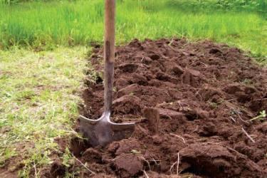 God jordstruktur är viktig för att ge växtrötterna en bra miljö.