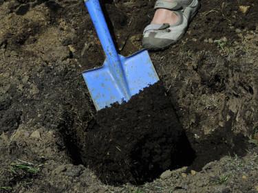 Blanda lätt planteringsjord med lite av den befintliga jorden. Foto: Bernt Svensson