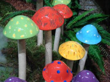 Glada svampar från Flyinge Plantshop.
