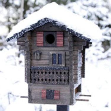 Multiholk Fjällstugan fungerar både som fågelbord och fröautomat. [Finns hos Odla.nu](http://erbjudande.odla.nu/ff/?utm_source=odla&utm_medium=webb&utm_campaign=shopspalt1). Foto: Wildlife Garden