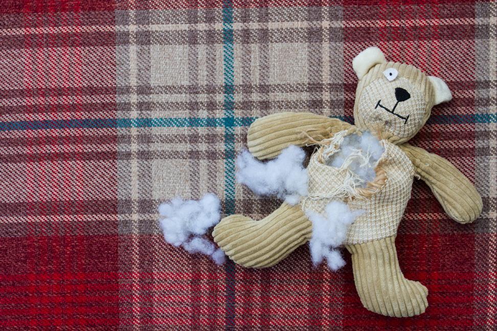 CI: Teddy