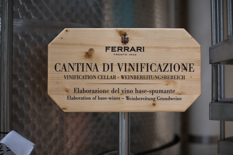 f61b40fa0ba Wine tour | NICOLE FALCIANI | Bloglovin'