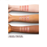 KISSING Nude Shades Arm Swatch