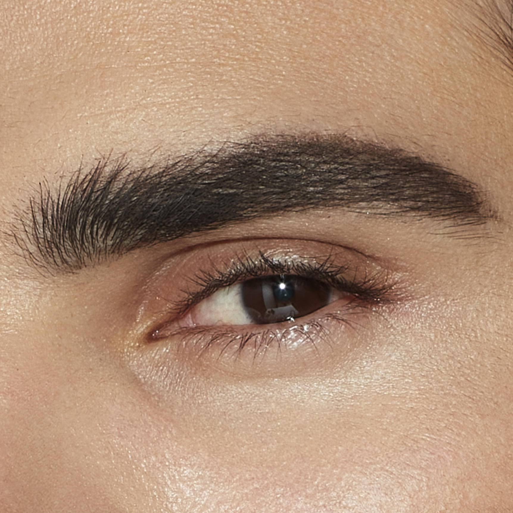 brow tutorial for men image