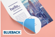 Cheap Blueback Poster Printing all over the UK | Free delivery and 100% satisfaction guarantee for all posters with Helloprint