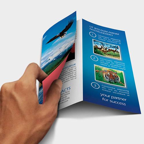 Design Your Own Leaflets Uk