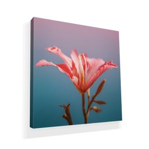 Waterproof Canvas Prints personalisation