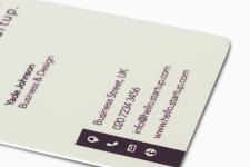 Cartes De Visite En Plastique Blanc PVC