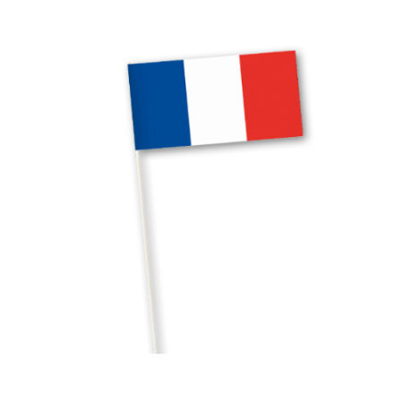 A French flag printed on a paper country flag, available at Helloprint for a cheap price
