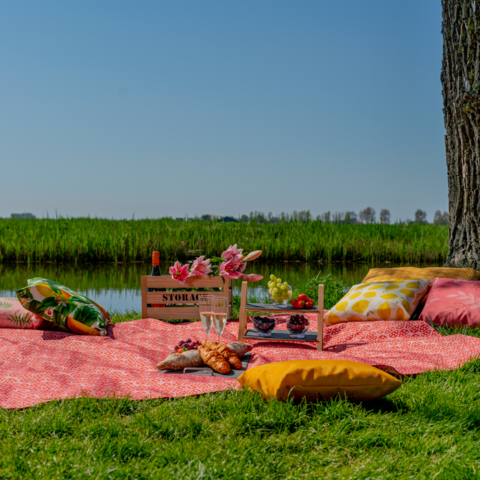 Image of a personalised picnic blanket with printed pillows.