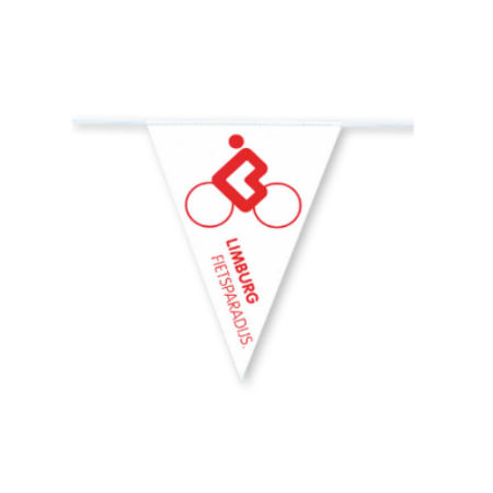 A sample image of a triangular bike flag, available at a low price with a custom logo or image at Helloprint