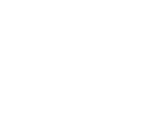 Private Division Logo Primary Reverse