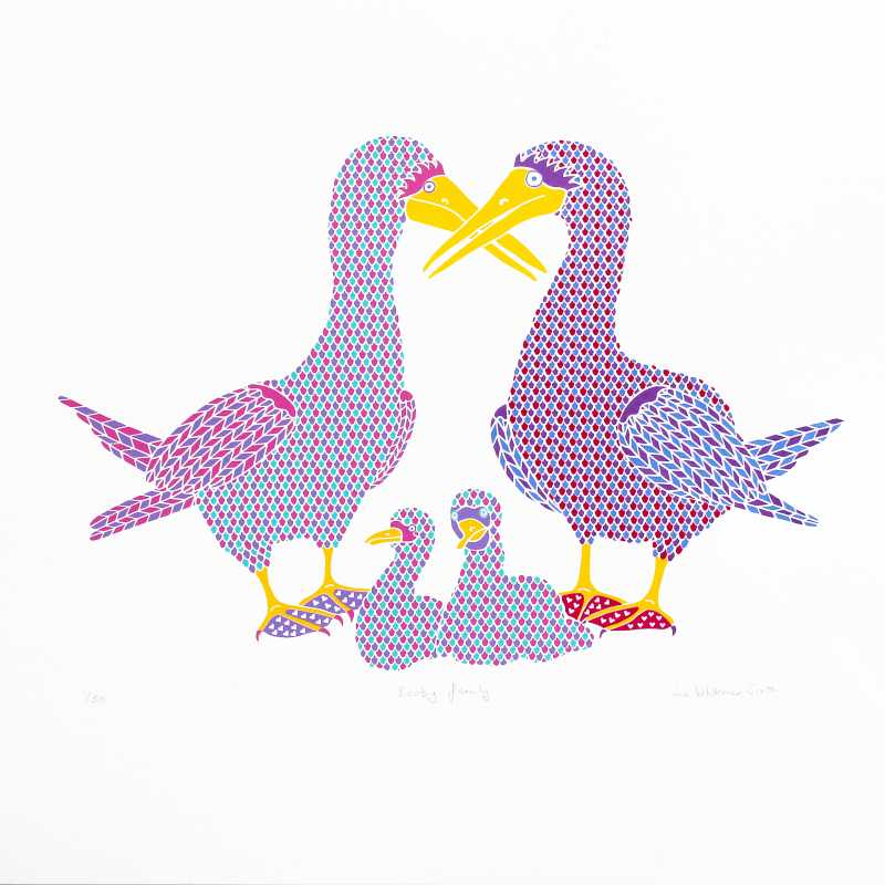 Liz Whiteman Smith, Booby family, Screen print, Edition of 50, 50x50cm, Unframed: £150, 2019