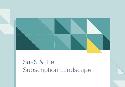 Guide-SaaS and Business Landscape