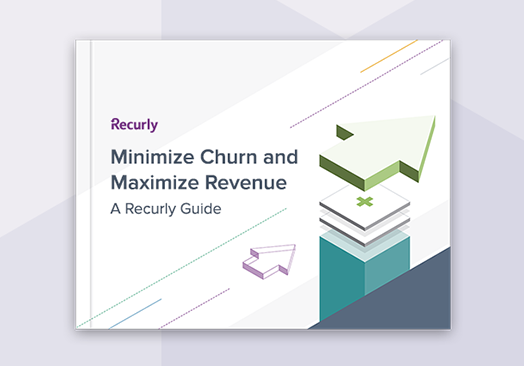 Guide Minimize Churn Maximize Revenue