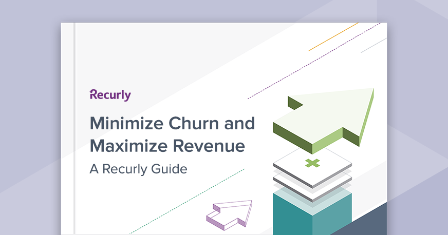 Strategies to Minimize Churn and Maximize Revenue