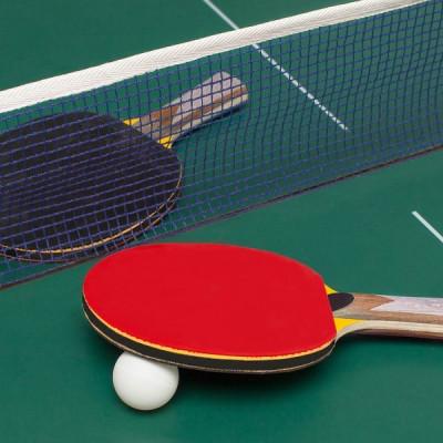 Настольный теннис в санатории Минеральные Воды
