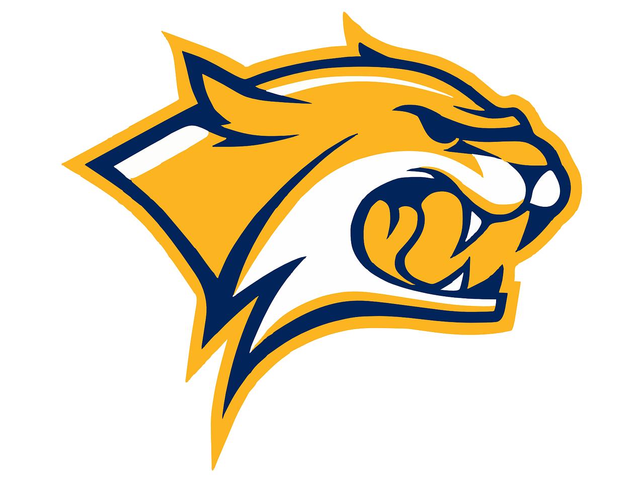 team-yellow-logo