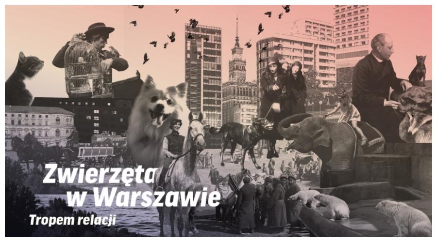 Zwierzęta w Warszawie. Tropem relacji