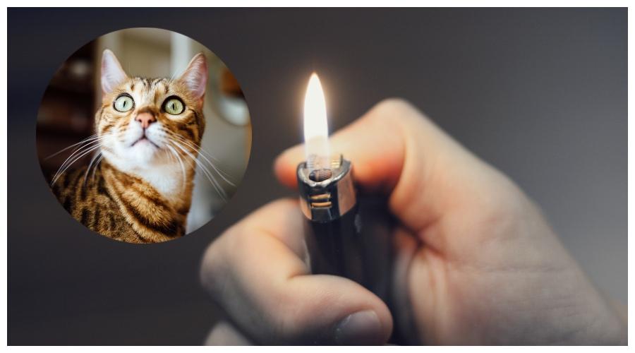 Zdjęcie ilustracyjne: zapalniczka