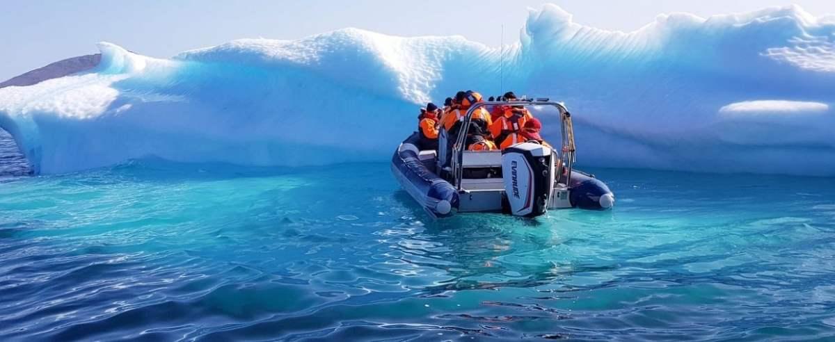 Antarktyda - odkryto nowe stworzenia
