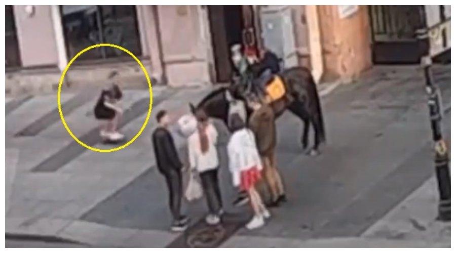 koń i skater