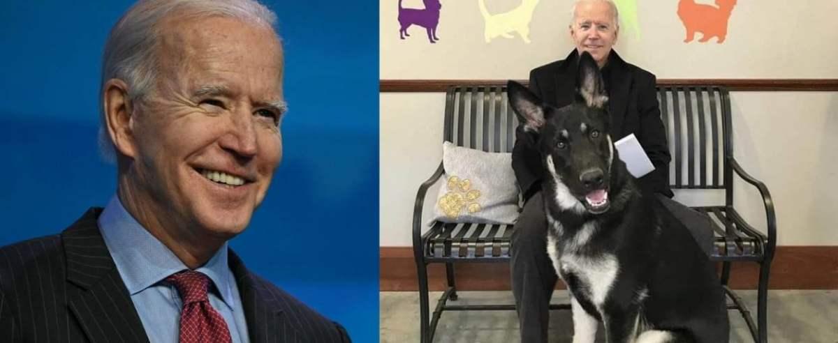 Joe Biden z psem