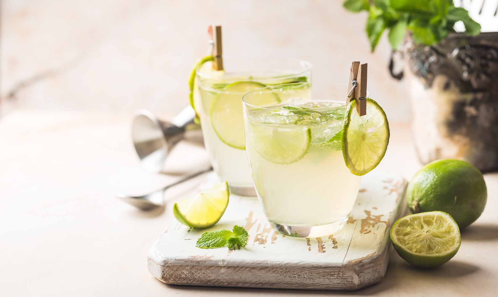 Mint and lemon cooler recipe image