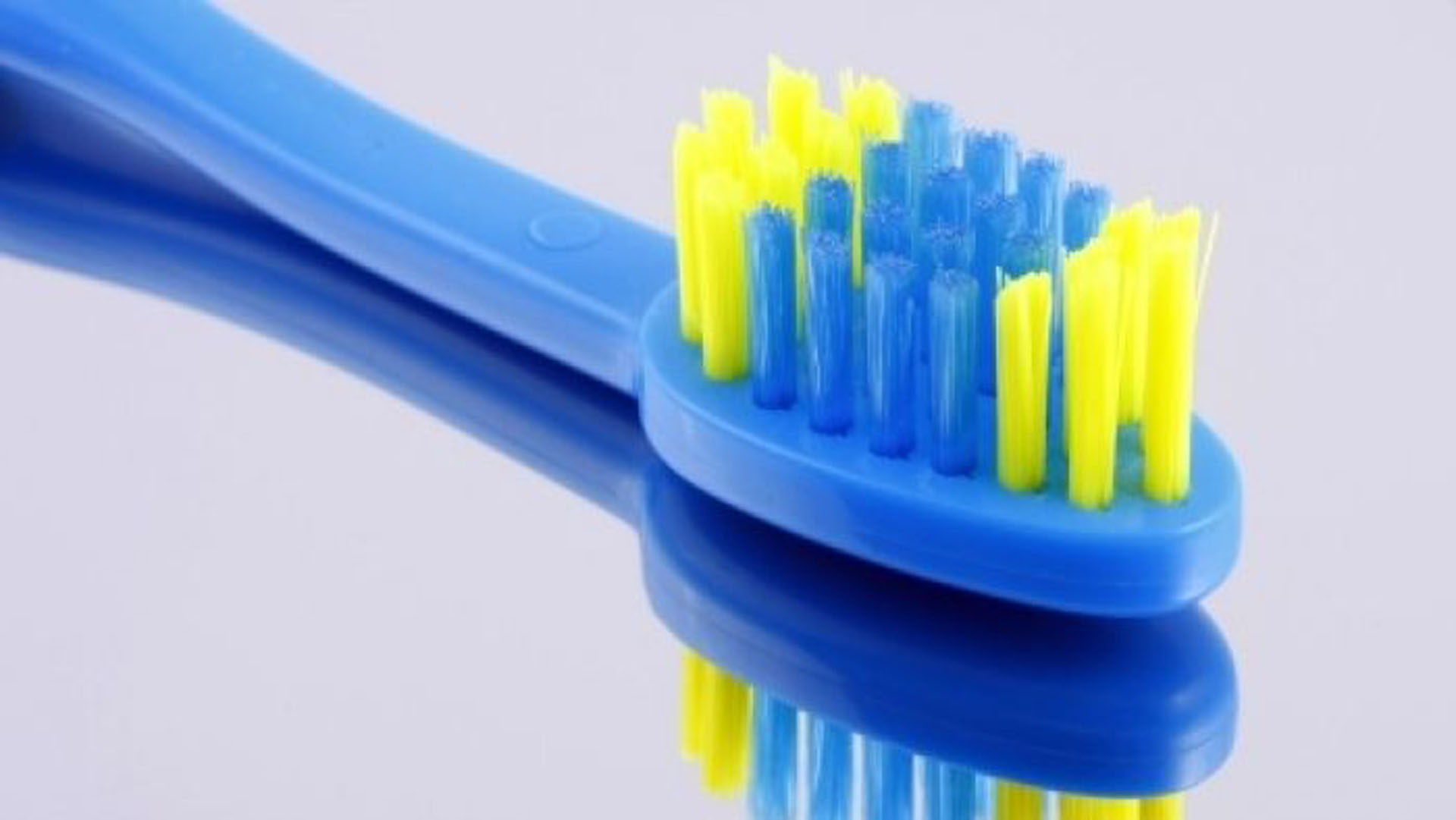 the-history-of-the-toothbrush