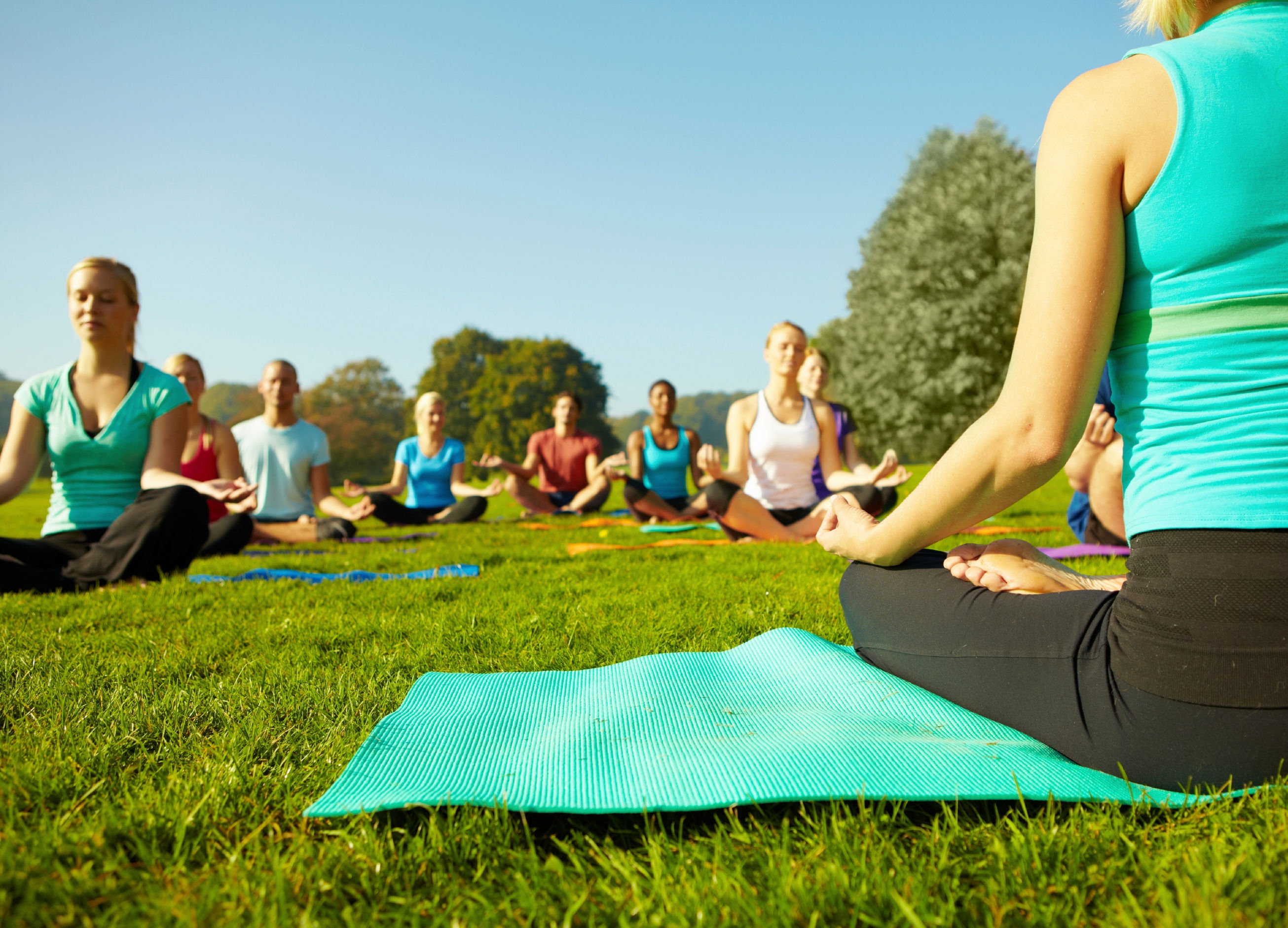 Ground view of a group of people attending a yoga class outdoors