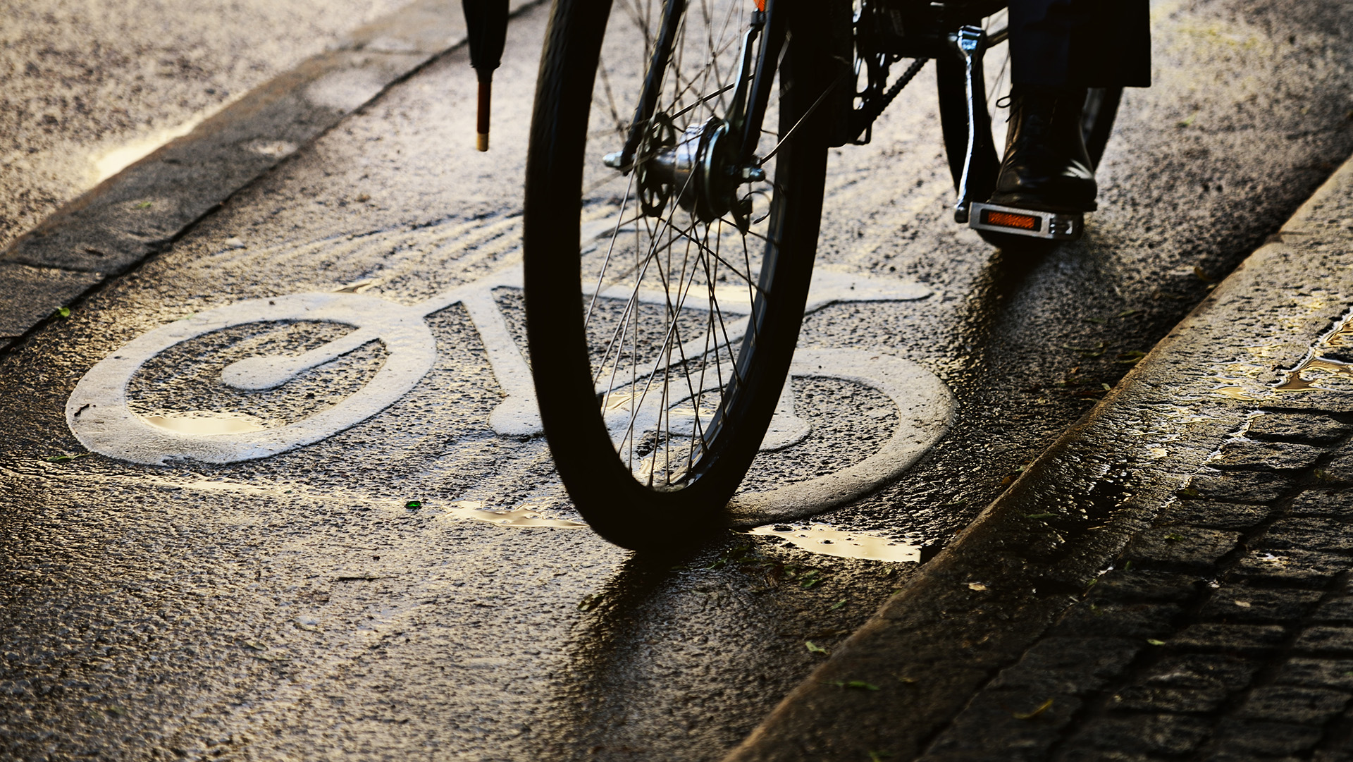 Bike lane on a rainy day. Sign for bicycle painted on the asphalt.