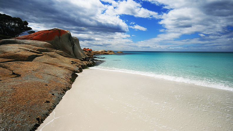 The Beach and Turquoise waters of Binalong Bay in The Bay of Fires, Tasmania, Australia