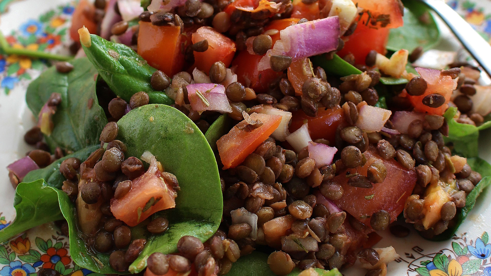 french-lentil-and-tomato-salad