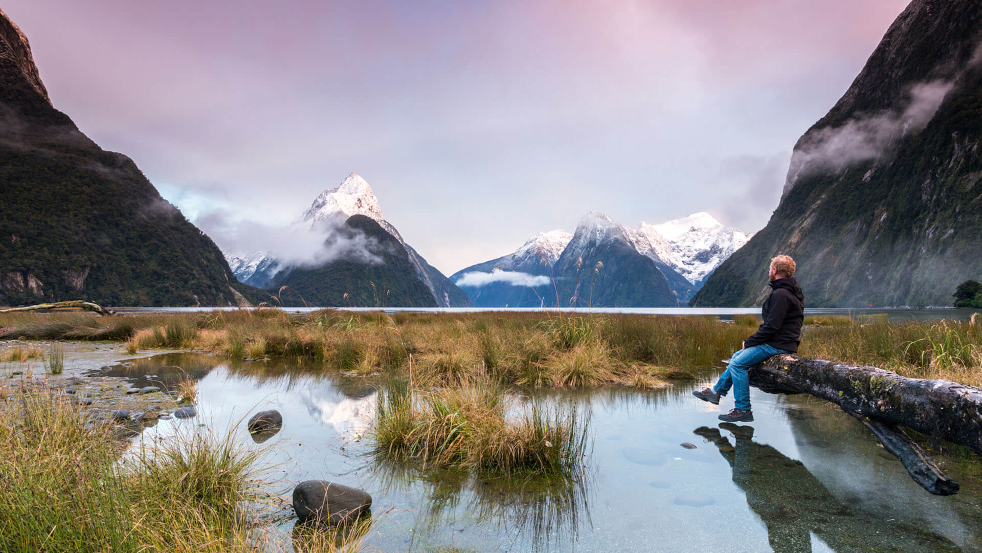 Man looking at beautiful landscape at dawn, Milford, New Zealand