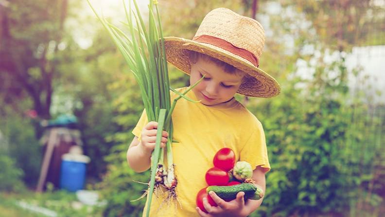 Gardening is a fun way to teach children about food