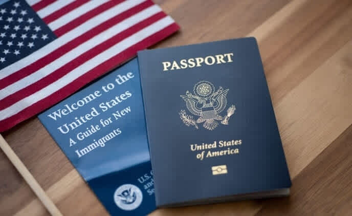 H-1B visa holders in the United States: An overview