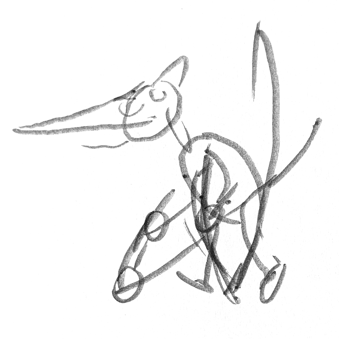 A Pteranodon drawing with slightly more detail