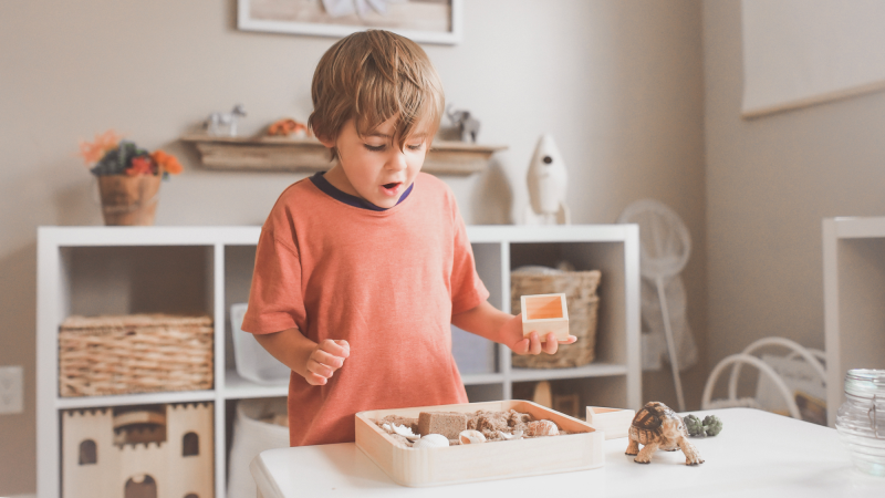 A kid exploring a collection of fossils and shells in a box.