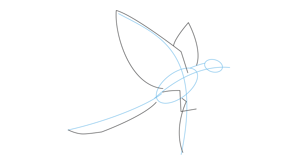 How to draw an archaeopteryx step 2